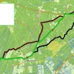 active routing op topo BNL